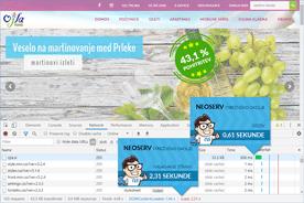 Turistična agencija Ojla - DevTools po prenosu
