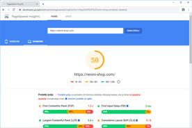 Renini-Shop.com - PageSpeed Insights po prenosu